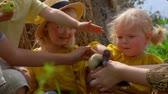 humor : Cute children stroking a little duckling in their mothers arms on a background of haystacks Stock Footage