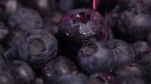 agrio : Close up of water drops falling on large ripe tasty blueberries