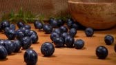 sour cream : Large mouth-watering ripe blueberries roll on a wooden surface of a table against a burlap background