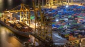 gantry : Seaport and loading docks at the port with cranes and multi-colored cargo containers night timelapse Stock Footage