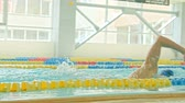 hatları : Young swimmer in a swimming pool