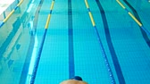 borboleta : Young swimmer in a swimming pool