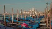 maryja : Parked gondolas on Piazza San Marco and The Doges Palace embankment with the Santa Maria Della Salute, Church of Health on a background