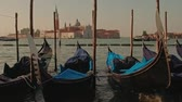 movement : Parked gondolas on Piazza San Marco and The Doges Palace embankment with the bell tower of the Saint Giorgio Maggiore Church on background. Stock Footage