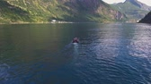 escandinavo : Couple on motor boat sailing on Geirangerfjord, Norway