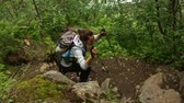 floresta : Woman hiker with backpack walking on the wild track in mountain forest. Norway.