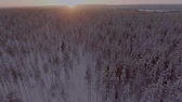 magia : Aerial view of a beautiful Lapland winter landscape Vídeos