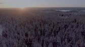 sunset : Aerial view of a beautiful Lapland winter landscape Stock Footage