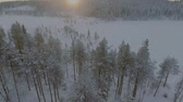магия : Aerial view of a beautiful Lapland winter landscape Стоковые видеозаписи