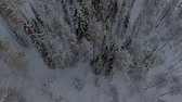 escandinávia : Aerial view of a beautiful Lapland winter landscape Vídeos