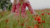 grass : Beautiful young in the poppy field