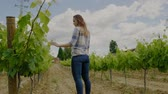 rolnik : Young woman in vineyard Wideo