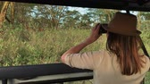 サバンナ : Woman on a safari trip in Masai Mara spotting giraffes