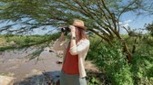 サバンナ : Woman spotting with binoculars in Masai Mara park, Kenya