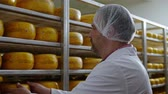 bodega : Cheesemaker checking ready product in a storage room Archivo de Video