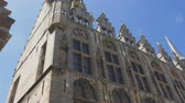 corner : The exterior details of the Middelburg town hall edifice. A display of the exquisite architecture filmed from a low angle on a bright summer day. Stock Footage