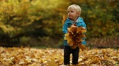 full body shot : Childhood moments: boy tosses maple leaves. Full body shot. Selective focus. Slow motion.