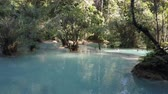 ラオス : Kuang Si Falls pools with bathers bathing in the turquoise waters. Wide shot.