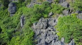 ragged : Limestone mountain close up. Drone flies close into the rocks and plant life on a mountain in Ninh Binh, Vietnam. Drone shot. Close-up. Stock Footage