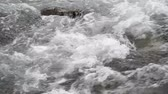 inundaciones : Video of close up of water running down a creek. Archivo de Video