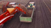 crane : Harvesting potatoes using by a modern potato harvester