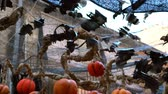 morcego : bats and pumpkins made from recycled plastic to decorate streets on halloween Stock Footage