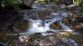 fast mountain stream with clear water. Mountain stream flows among the stones