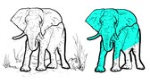 marfim : Elephant Outline Animated illustration. Hand-drawn clipart style. 5 seconds buildup and teardown 5 seconds motion sequence. Stock Footage