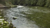 pedregulho : The green Capliano River flowing over rocks and a weir in North Vancouver, BC.