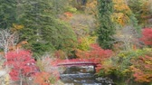 freshness : Nice view of a sightseeing boat cruising on autumn Lake Towadako in Towada Hachimantai National Park