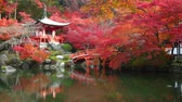 garden : Daigo-ji temple with colorful maple trees in autumn, Kyoto, Japan Stock Footage