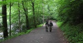 Two fisherman are walking in the forest after fishing Stock Footage