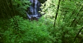 appalachian : Beautiful waterfall in Great Smoky Mountains National Park Stock Footage