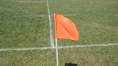 oyun alanı : Flag waving in the wind on the football field Stok Video