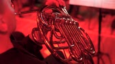 condutor : the musician plays the French horn on stage during a concert in the opera house