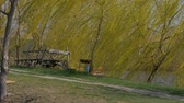 sensual : there is a broken wooden cart and a brazier, the wind sways the branches of a tree, a willow