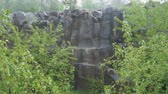 basalto : basalt columns in the pouring rain in nature between the bushes