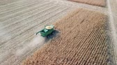 reaping : Russia, Krasnodar - August 30, 2017: Harvesting of corn. Harvester gather corn from the field. Russia, From Dron