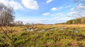 болото : Spring swamp. Taken with the use of a slider. Time Lapse