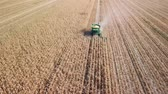 reaping : Russia, Krasnodar - August 30, 2017: Harvesting of corn. Harvester gather corn from the field. Russia, From Dron, Departure of the camera
