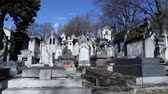 statue : The graves on the cemetery Pere Lachaise in Paris Stock Footage