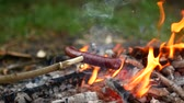 пылающий : delicious and fragrant sausage roasted on the campfire in the summer forest Стоковые видеозаписи