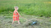 грабли : happy little girl with rake at the countryside on a summer day.