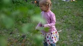 fűrész : A preschool girl with a tourist saw in her hands tries to cut wood in the forest. Stock mozgókép