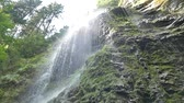 Beautiful waterfall in the Carpathians. Shooting from the bottom. Stockvideo