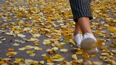 wanderstiefel : Slow Motion, Girl Walking in Autumnal Park on Orange Leaves, Scattering Kicking Leaves, Autumn, Shod in White Sneakers and Short Jeans, Leaves Flies From Step.