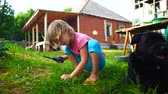 kırkmak : Child girl cutting grass on a lawn with scissors. Stok Video