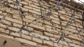 borotva : Barbed wire on a brick wall.