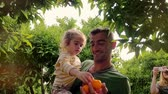 trees : Young father holding daughter in hands and harvesting orange in fruit garden