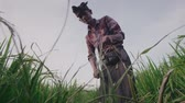 vime : Bottom view of old farmer cutting grass with sickle Stock Footage